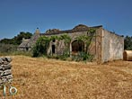 Small farm between Nociand Mottola - Puglia