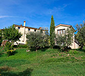 Villa with vineyards and olive groves on the hills of Sabina - Lazio