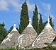 Tourist information on Alberobello